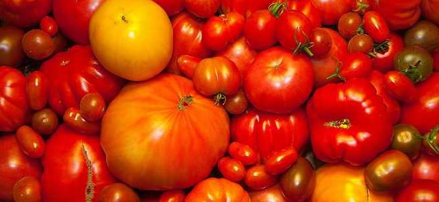Tomatenvielfalt - bald bedroht? Foto: W***/Flickr (cc)