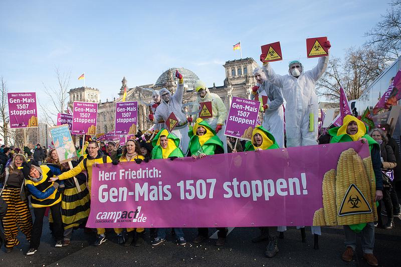 """""""Wir haben Gen-Mais satt, Herr Friedrich!"""""""