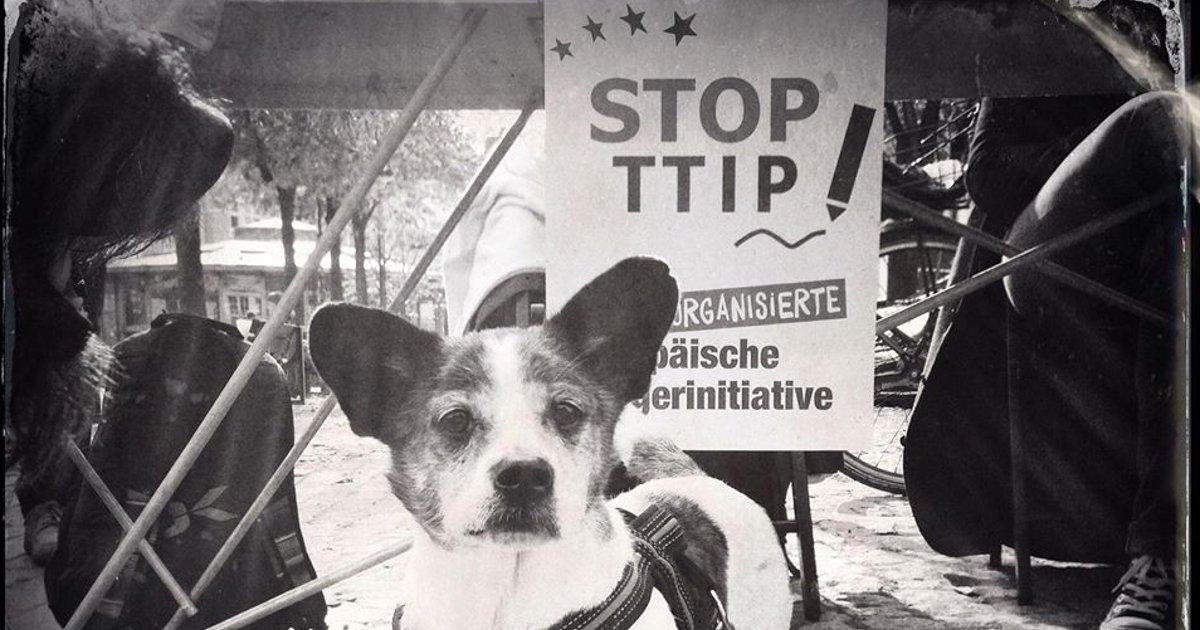 Unterschriftenaktion für die Europäische Bürgerinitiative gegen TTIP und CETA