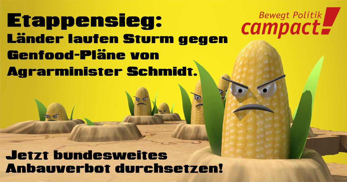social-media-grafik-zum-genmais-schaubild-1200-630-upload-1200x630-v3