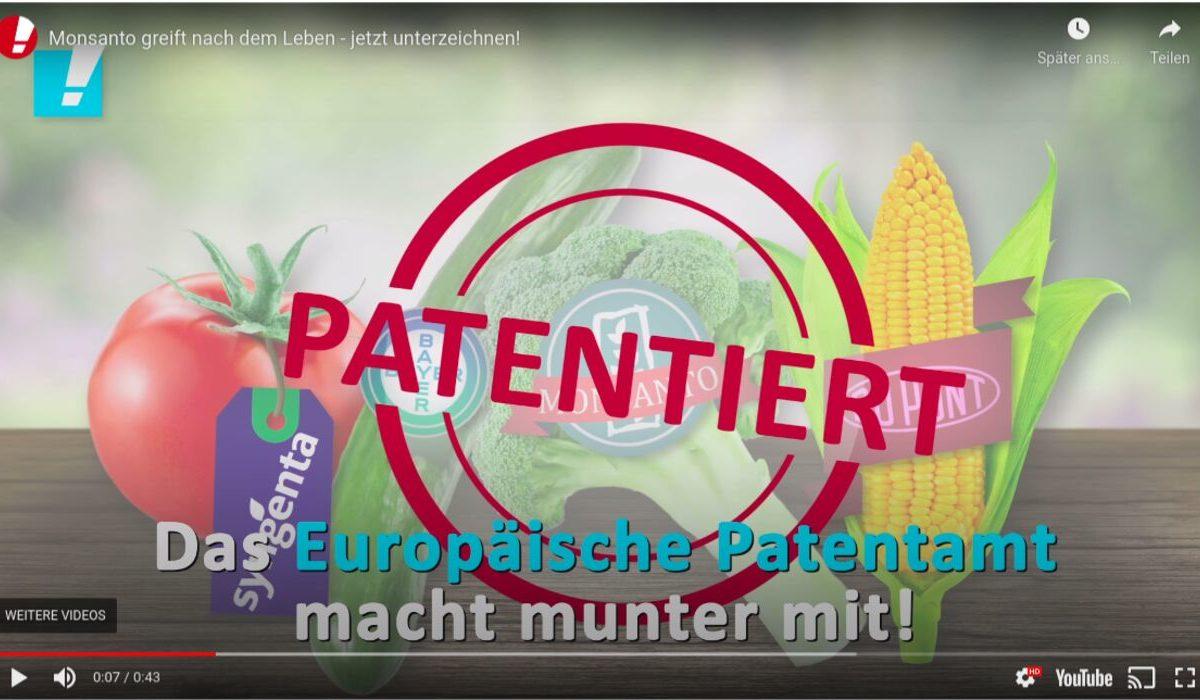 YouTube-Screenshot: Gegen Patente auf Lebensmittel! Kein Patent für die Monsanto-Melone.
