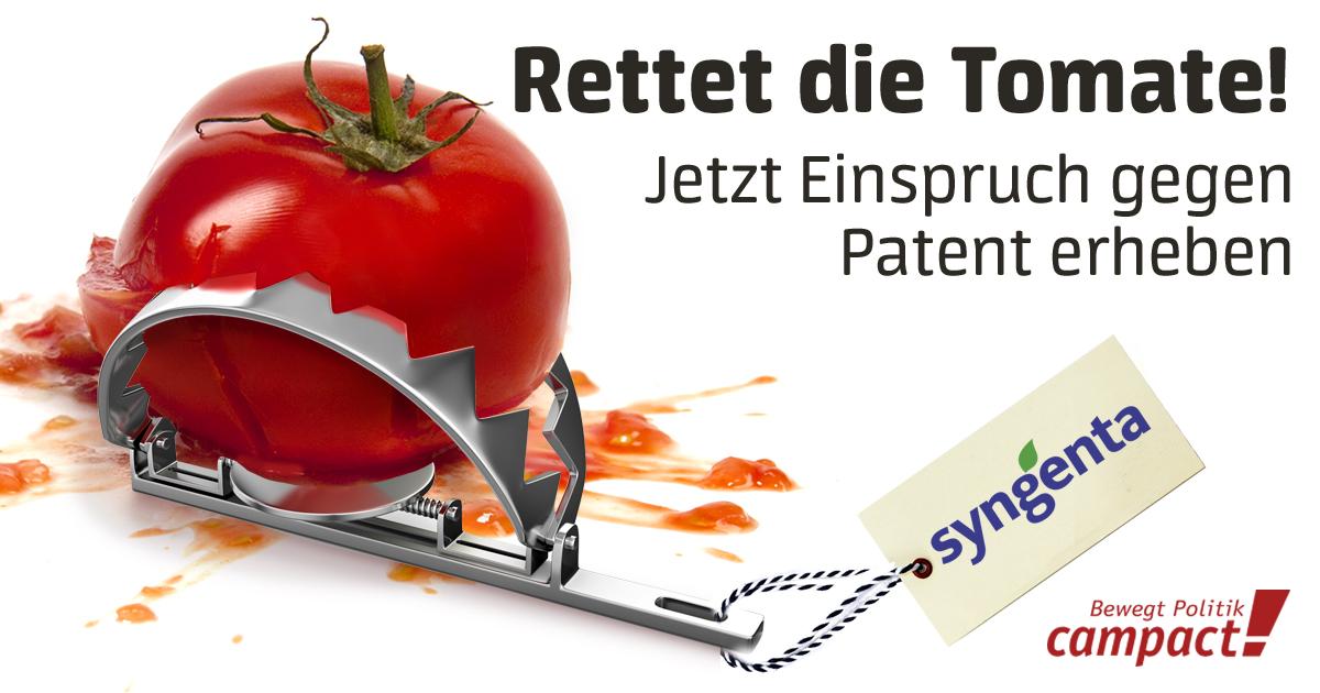 Mit einem Masseneinspruch kippen wir Syngentas Patent auf eine Tomate