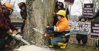 Aktion vor dem FSC Sitz in Bonn. Bären schützen – illegale Abholzung stoppen! Foto: Jörn Neumann / Campact CC BY-NC, Namensnennung-Nicht kommerziell
