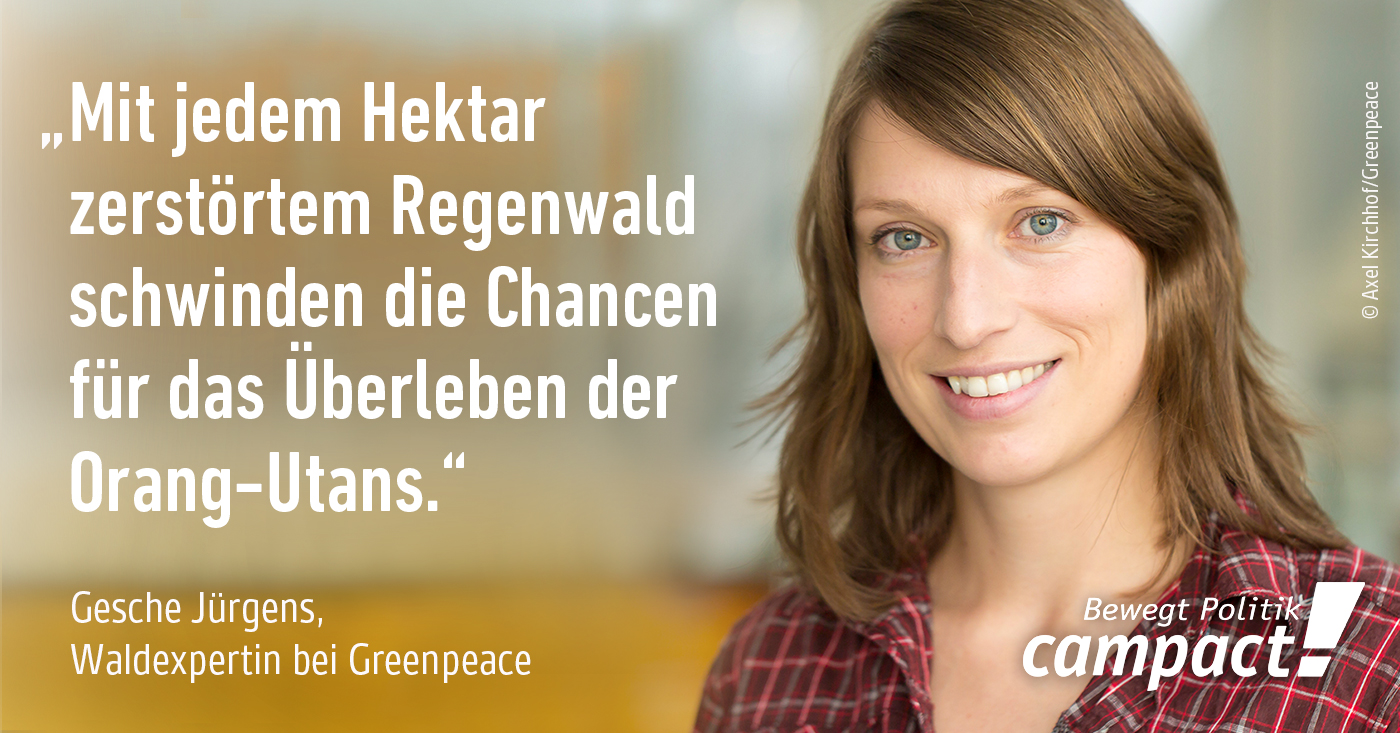 Foto: Axel Kirchhof/Greenpeace [CC BY-ND 2.0]