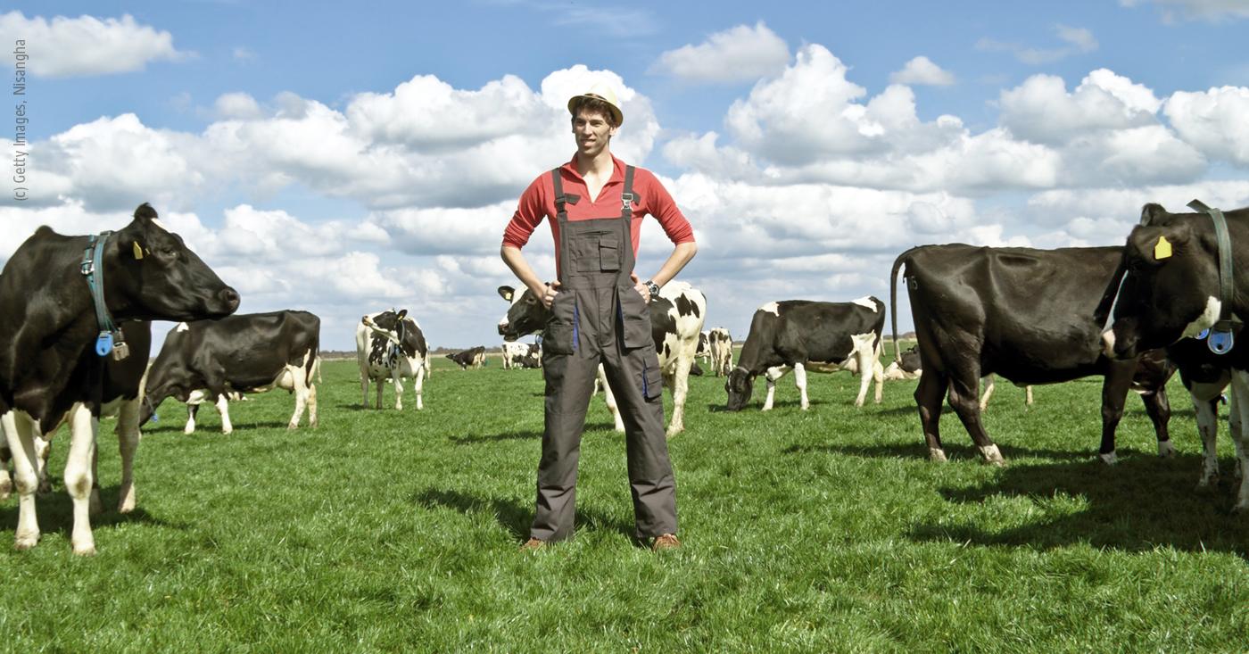 Billigfleisch in Massen? Stoppt Mercosur