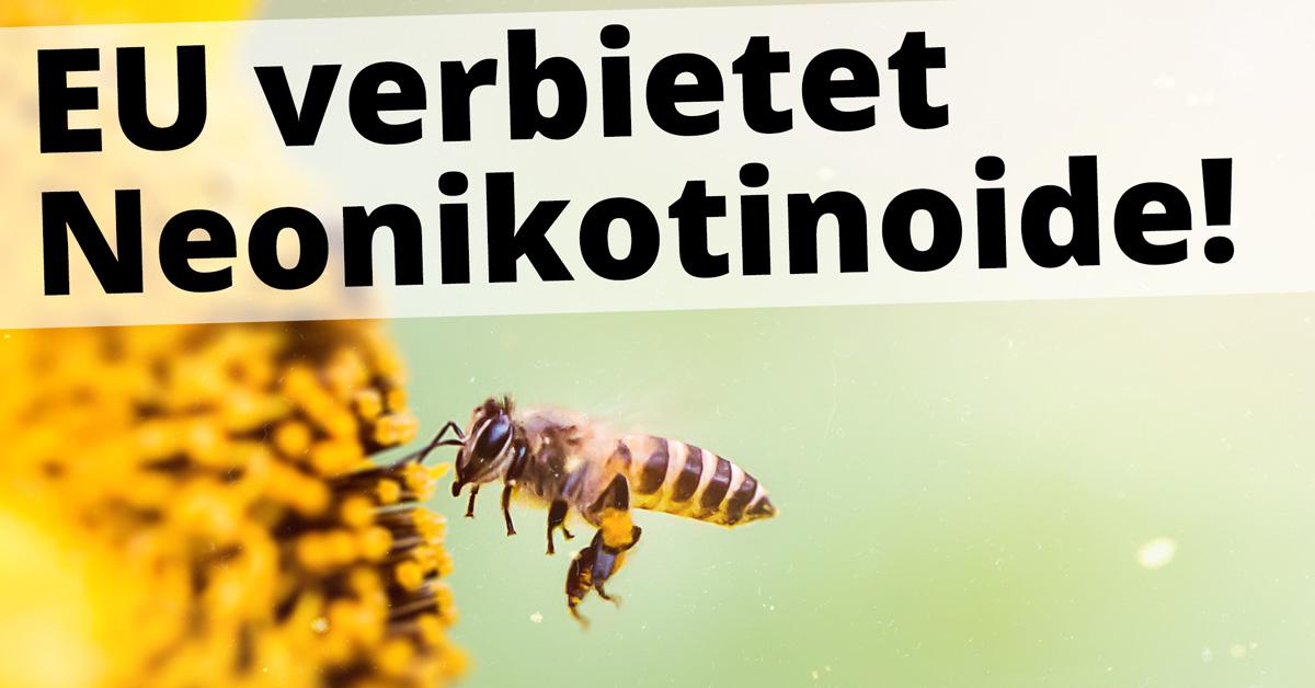 EU verbietet Neonikotinoide / 400.000 Menschen haben den Campact-Appell unterzeichnet / Campact e.V. [CC BY-ND 2.0]