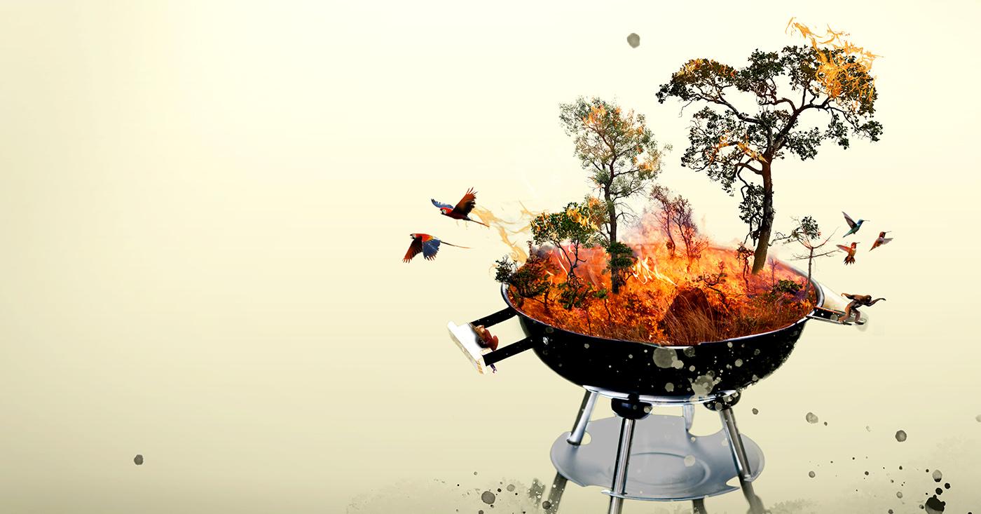 Rewe grillt den Regenwald. Campact startet einen Appell