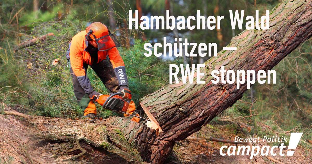 Bildergebnis für fotos von v´campact zum hambacher wald appell