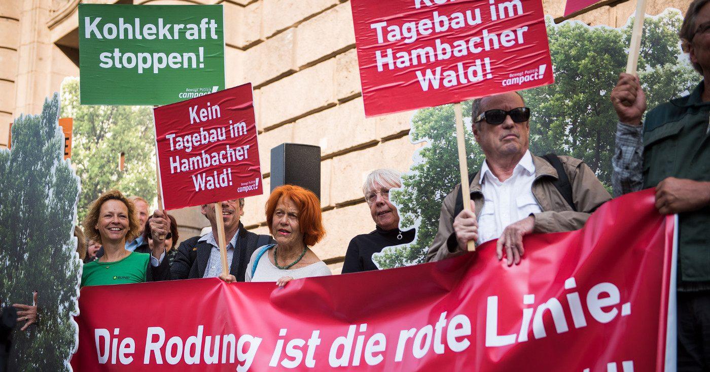 Protest gegen die Rodung des Hambacher Waldes. Foto: cc-by-nd 2.0, (siehe creative commons-Lizenz). Für kommerzielle Verwendung wenden Sie sich bitte an chris @ jib-collective.net