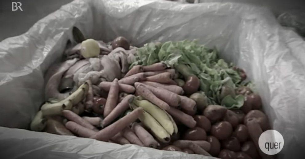 Lebensmittel retten: Containern ist kein Verbrechen. Gleich jetzt WeAct-Petition unterzeichnen