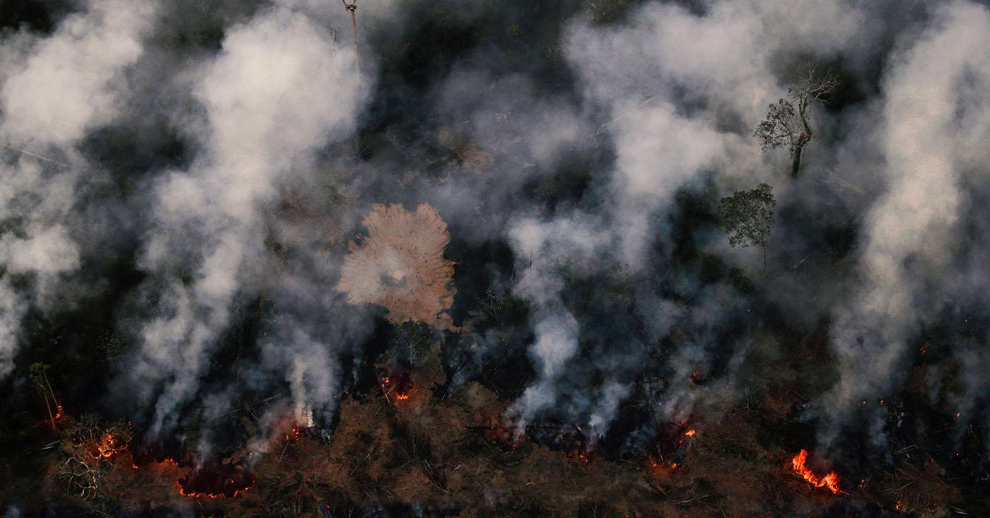 Mercosur stoppen - Amazonas-Regenwald retten. Jetzt Appell unterzeichnen