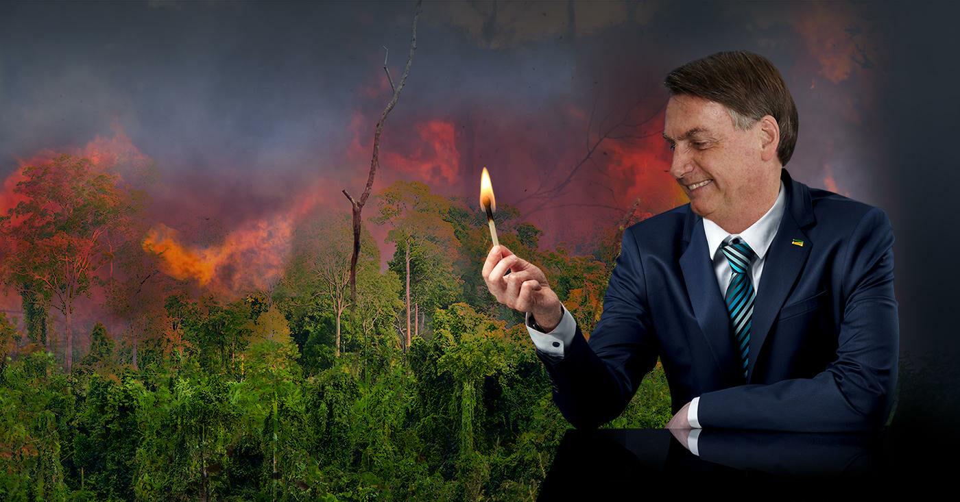 Brasiliens Präsident Jair Bolsonaro will den Regenwald abholzen - so gnadenlos wie seit zehn Jahren nicht mehr. Aldi Nord, Edeka und Lidl können ihn stoppen, wenn sie jetzt mit dem Boykott brasilianischer Produkte drohen.