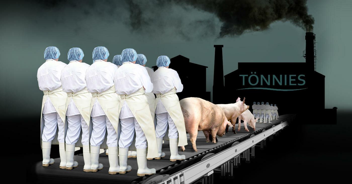 Dieses System ist krank: Mensch, Tier und Umwelt leiden unter der Massenproduktion in der Fleischindustrie. Campact startet einen Appell