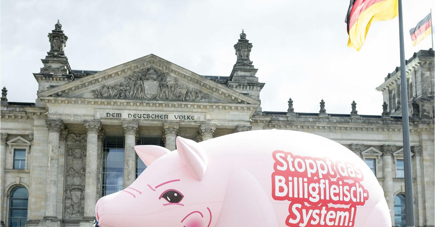 Aufblasbares Schwein als Protestaktion vor dem Bundestag: Bei Tönnies und Co. gibt es zu wenig Arbeitsschutz