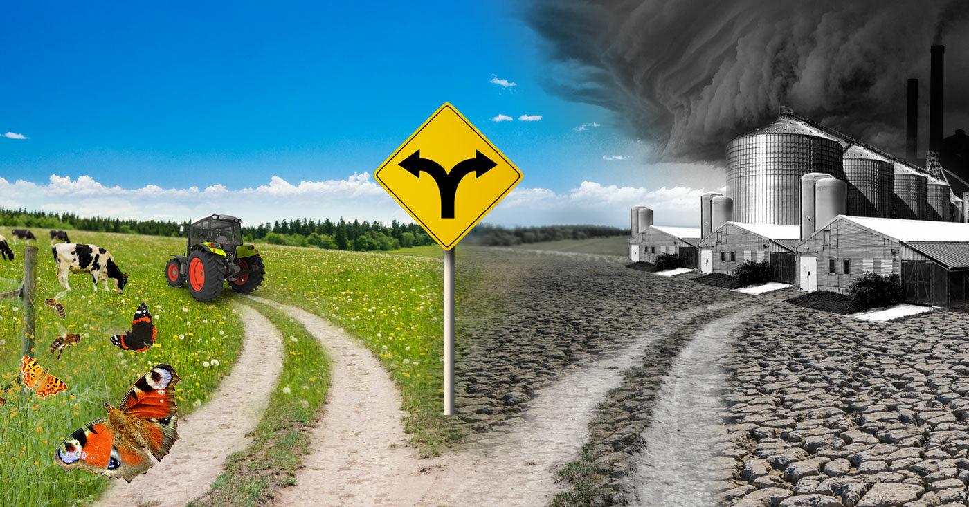 Agrarwende statt Agrarwüste: Die Bundesregierung muss sich entscheiden. Unterzeichne jetzt den Campact-Appell