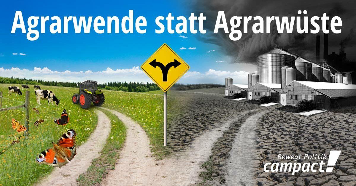 Agrarwende statt Agrarwüste: Straßenschild mit Weggabelung zu einem grünen Weg mit Kühen oder einem grauen Weg mit Fabriken und Smog