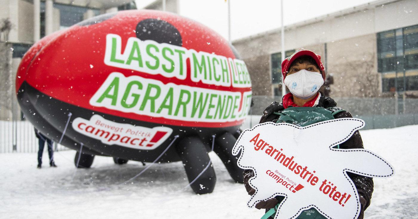"""Ein aufblasbarer Riesen-Marienkäfer steht vor dem Kanzleramt. Eine Campact-Person hält ein Schild mit der Aufschrift """"Agrarindustrie tötet"""""""
